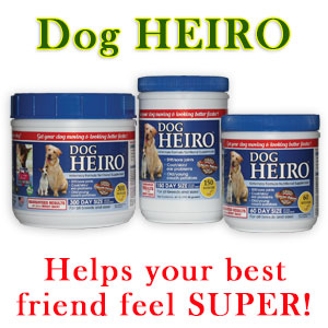 High Protein Low Carb Grain Free Dog Food