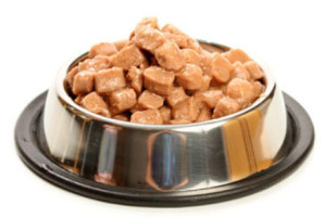 Canned Dog Food bowl