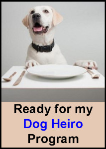 Dog-DinnerPlate