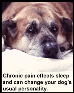 ChronicPain