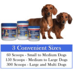 All natural supplement for dogs - dog vitamins