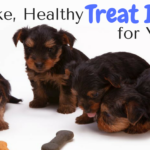 no-bake, healthy dog treat ideas
